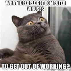 Cat thinking about how people get computer viruses
